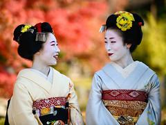 colors (byzanceblue) Tags: kyoto gion maiko kimono beautiful woman girl female cute color colour bokeh nikkor d850