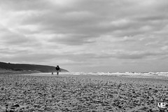 on rentre DxOFP KtriX400 LM35 1005071 (mich53 - thank you for your comments and 4M view) Tags: monochrome noirblanc blackwhite nuages nuageux clouds ciel plage beach lerozel frankreich manche cotentin mer coastling dog chien promenade leicamtype240 télémètre rangefinder telémetro vacances 2017 lespieux summiluxm35mmf14asph rasdusol