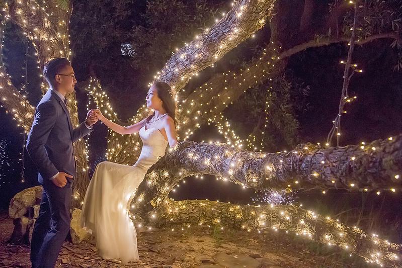 舊金山婚禮,美式婚禮,美國婚禮,美國舊金山,海外婚紗,葡萄莊園婚禮