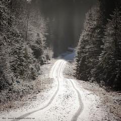 20171115003727 (koppomcolors) Tags: koppomcolors värmland varmland vinter winter sweden sverige