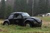 135/17  - the champ - (mariburg) Tags: rotten marode alt old rostig rustycars canonef2470mmf28liiusm canoneos6d vw käfer auto vwkäfer