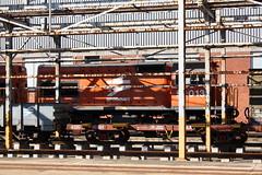 Transnet: Diesellok 91-013 im Humewood Depot (Helgoland01) Tags: easterncape südafrika southafrica transnet schmalspurbahn narrowgauge portelizabeth nelsonmandelabay güterwagen class91 transnetclass91 spoornet