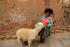"Quechua with Llama • <a style=""font-size:0.8em;"" href=""http://www.flickr.com/photos/61441398@N08/37816365184/"" target=""_blank"">View on Flickr</a>"
