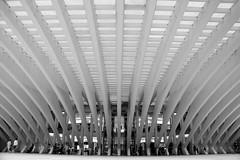 En todas direcciones (Osruha) Tags: oviedo asturias asturies españa espanya spain centromodoo modoo shoppingcenter arquitectura architecture santiagocalatrava calatrava modernidad modernitat modernity blancinegre blancoynegro blackandwhite bn bw bnw byn monocromo monochrome monocrom nikon nikonistas d750 flickr