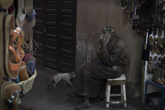 Marrakech (J.Carlos Pérez) Tags: foto fotografía marruecos marrakech viaje travel traveler traveling gato animal animales calles calle street comida cat food pobreza