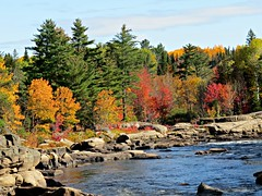 Fall on the Nipisiquit River (clickclique) Tags: trees fall color colour sky water blue red orange beauty rocks bend bendintheriver green spruce maple reflections l1gestalt