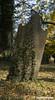 Tilted (rumimume) Tags: potd rumimume 2017 niagara ontario canada photo canon 80d sigma fall autumn stmarks church graveyard sun november outdoors history uppercanada age notl