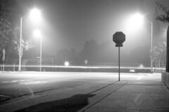102917-0525 (Immane) Tags: pentaxspotmaticii sears 55mmf28macro 135 35mm film analog aristaeduultra100 fomapan d76 11 blackandwhite monochrome bw roll143 losangeles burbank night longexposure bulb fog foggy stopsign