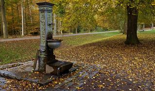 Germany, Herbst rund um den Bärensee bei Stuttgart, 75642/9118