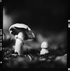 Bronica SQ-A-041-008 (michal kusz) Tags: ilford delta 400 pro 800 zenzanon 80mm green filter cokin macro ddx epson v600 bronica sqa monochrome bw blackandwhite mushrooms pushed