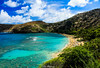 Hanauma Bay, Oahu, HI (eliza_montgomery) Tags: hawaii hanaumabay coralreefs reefs green blue ocean outdoors nature tropical tropicallandscape water trees