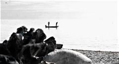 That One Great Day Off (Shot by Newman) Tags: washingtonstate puggetsound bw bwphoto bwfilm water fishing smallboat rocks shotbynewman ilfordfilm ilford400 35mm daylight 35mmminolta ilfordbwfilm