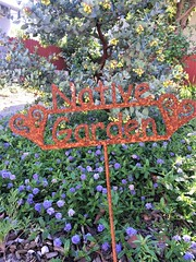 native garden sign - Jeff Silva - edited (CA Native Plant Society) Tags: cnps california native plant society garden ambassador northern back yard home pollinator habitat butterfly bee bird hummingbird going tour manzanita ceanothus purple rustic arctostaphylos spring landscape