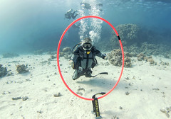 quadruple amputee man takes diving course 23 (KnyazevDA) Tags: disability disabled diver diving deptherapy undersea padi underwater owd redsea buddy handicapped aowd egypt sea wheelchair travel amputee paraplegia paraplegic