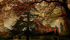 Stately retreat (Jan 130) Tags: jan130 hoarcrosshall hotel building woodland gardens november2017 milesfromanywhere textured topazstudio generousgift staffordshireengland geotagged