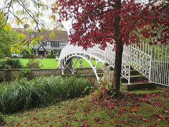 "dianne-footbridge4 • <a style=""font-size:0.8em;"" href=""http://www.flickr.com/photos/88684851@N02/38470396786/"" target=""_blank"">View on Flickr</a>"