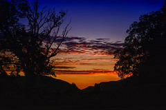 Dusk (Kevin_Jeffries) Tags: dusk sunset trees silhouette nikond800 nikkor evening colour kevinjeffries gorge skyline nature landscape clouds nikonphotography 240850mmf3545 newzealand waimate southisland lastlight atmosphere light hues intensity d800 composition
