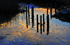 Toward Evening (daniel0027) Tags: wetland woodenpost waterbubbles plants scenery sunsetcolors columns water lake clouds stone reflection
