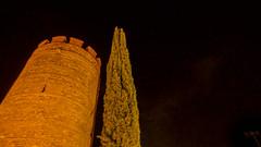 Por las calles de Alcalá de Henares de noche (ricardoriveram) Tags: alcaladehenares alcala españa spain europa europe arquitectura architecture castle castillo noche night nocturna foto fotografia fotografo dark darkness photo photographer photographya