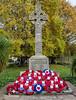 Washington Village Cenotaph (kensparnon) Tags: washington cenotaph memorial monument poppy remembrance day village