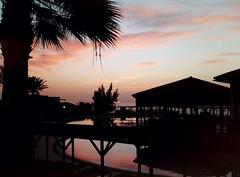 Magic Sunrise (wendyhayes2) Tags: spain fuerteventura sunrise palmtree earlymorning poolside sky clouds canaryislands