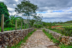 Stone Street (ruimc77) Tags: nikon d5200 nikond5200 sigma 18250mm f3563 dc macro hsm sigma18250mmf3563dcmacrohsm triunfo pe pernambuco brasil brazil rural sertão sertao interior estrada careterra road stone pedra piedra