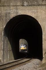 Caney (Colin Dell) Tags: crr clinchfield crr800 crr3632 800 3632 caney tunell portal time f funit emd train santa railroad santatrain csx 75th sun mcclure colindell
