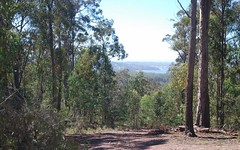 Lot 197 Millingandi Road, Millingandi NSW