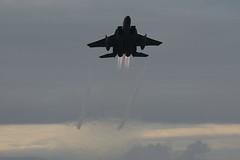 DSC_2473 (sauliusjulius) Tags: f15c eagle the 493d fighter squadron 493 fs thegrimreapers us air force usaf bap baltic policing quick reaction alert qra lithuania siauliai sqq eysa