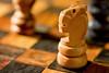 knight (Sabinche) Tags: sabinche macromondays chess knight gamesorgamepieces