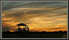 Observers (WanaM3) Tags: wanam3 sony a700 sonya700 texas houston elfrancoleepark park outdoors clouds sky goldenhour twiligth dusk observationplatform wetlands people observers sunset