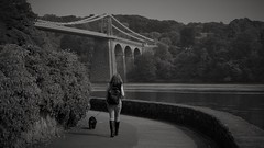 H walking the dog. (nige.cox61) Tags: menaibridge wales anglesey