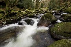Shaugh Prior (Please visit www.markainsley.com) Tags: autumn fall river plym cascade flow rocks moss boulder devon dartmoor uk england landscape d7100 green
