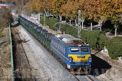 Pasillo Otoñal (Mariano Alvaro) Tags: trenes bobinas 251004 azul renfe locomotora pasillo verde ferroviario bobinero