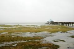 Duck_soundside_20121028_25 (erdc-chlfrf) Tags: duck storm waterlevel sandy hurricane currituck sound
