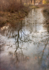 Winter Reflection (suzanne~) Tags: englishgarden winter stream water reflection tree sky texture lensbaby composerpro sweet35 blur munich germany