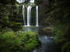 Whangarei Falls (loveexploring) Tags: hateariver newzealand northisland whangarei whangareifalls basaltcliff forest hiker landscape longexposure nativebush person river walker waterfall