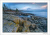 Stoney Point Lichens: (Mark Darnell) Tags: lakesuperior stoneypoint lakes park rocks