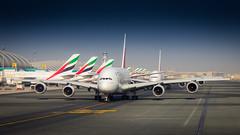 A380 Party; Dubai (papa_johns_95) Tags: a380 airbus dubai emirates airplane jet aviation terminal airport