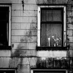 (Nico_1962) Tags: zeiss planar 50mm leica zwolle wall muur nederland leicam raam thenetherlands manual focus meetzoeker rangefinder zwartwit bw blackandwhite