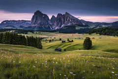 Seiser Alm (Frederic Huber | Photography) Tags: 1124 1635 2470 70200 landschaft altoadige canoneos5dsr dolomiten dolomites dreizinnen eos fotodiox frederichuber freearc italia italien italy lagodibraies landscape leefilters photography seceda seiseralm southtyrol sunrise sunset südtirol wonderpana wwwfrederichubercom seiser alm alpe di suisi