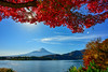 富士秋楓(DSC_5763) (nans0410(busy)) Tags: japan yamanashiprefecture fujifivelakes scenery outdoors autumn fujikawaguchiko mountfuji lakekawaguchi maple redleaves lighting sunstar 日本 山梨縣 河口湖 河口湖町 紅葉 楓葉 日芒 富士山 秋天 富士五湖 富士箱根伊豆國立公園 fujihakoneizunationalpark 富士吉田市
