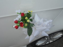 378 (en-ri) Tags: fiorellini bianco rosso verde bouquet mazzolino sony sonysti