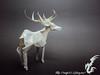 Deer (Rydos) Tags: paper origami art hanji koreanpaper korean paperfold fold folding paperfolding designed design model papermodel korea origamilst kamiyasatoshi deer caribou white