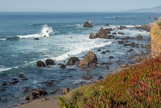 Chasing the Waves Along Sonoma Coast 8
