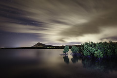 Mangrove at night in Mauritius (M. Barbera) Tags: nightphotography mountain ngc longexposure sea mangrove sky stars startrails clouds color landscapephotography landscapelover « landscape captures » landscapecaptures landscapeporn getlost landscapephotomag splendid earth gramslayers agameoftones optoutside discoverearth exploretheglobe nakedplanet places wow earthfocus ourplanetdaily earthofficial natgeo nationalgeographic awesome earthpix universetoday nightsky night nightscaper starscape longexpo awesomeearth natgeospace starrynight