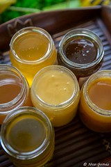 D010-©N.GOMEZ_Maison-du-Terroir-BD-copyright (roquebrunesurargens_lesissambres) Tags: agriculteur apiculture miel nicogomez officedetourismeroquebrunesurargens roquebrunesurargens