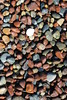 Standing Out in a Crowd (skipmoore) Tags: rodeobeach marincounty pebbles beach rocks