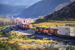 BNSF 7398 meet BNSF 6722 near Route 66 - California - USA (R.Smrekar-CH) Tags: route66 railroad railway california 000500 d750 smrekar usa