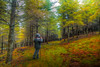 ANA Y LOS LOBOS (juan luis olaeta) Tags: paisajes landscape autumn otoño udazkena bosque forest basoa photomatix photoshop canon canoneos60d sigma1020 hdr zeanuri bizkaia basquecountry euskalherria nature natura naturaleza colores lightroom